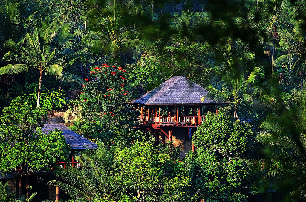 View of Como Shambhala's Wanakasa private residence in the distance surrounded by the Bali jungle.